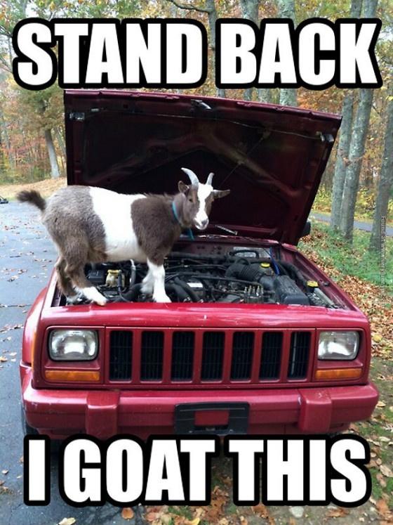 Car engine meme