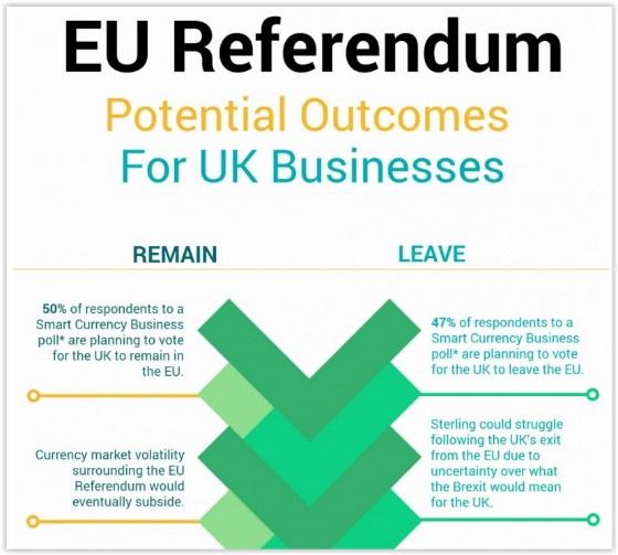 EU Referendum infographic