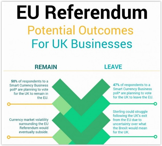 EU Referendum infographic
