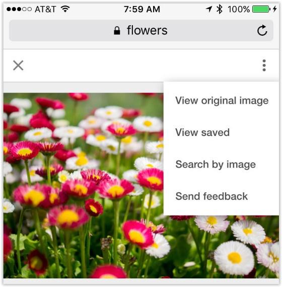 Google Mobile Image Search