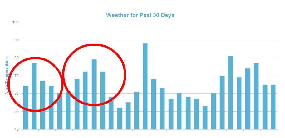 Google Hummingbird Mozcast Weather Report