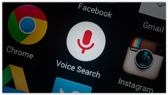 Voice Search logo
