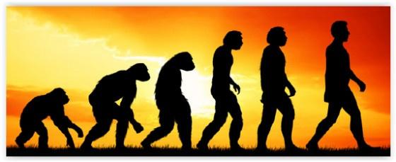 Web Dev evolution