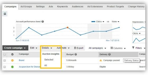 Bing Auciton Insights