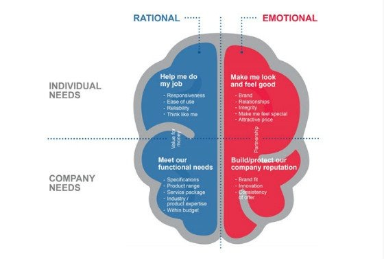 emotional and rational sides of brain