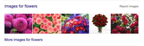 google-images-box-flowers