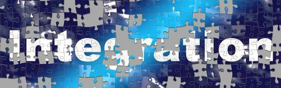 Integration jigsaw