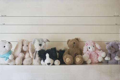The suspects... as cuddly toys.