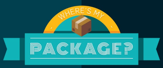 where's my package infograghic snippet